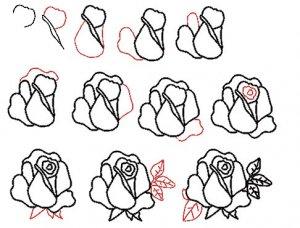 Рисование розы.
